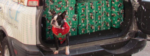 Box Delivery - even four legged elves get involved